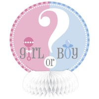 Gender Reveal 4 Mini Honeycomb Decorations 6''H
