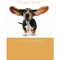 #18 Greeting Cards - Open Male 12pk