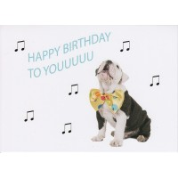 #29 Greeting Cards - Friend 12pk
