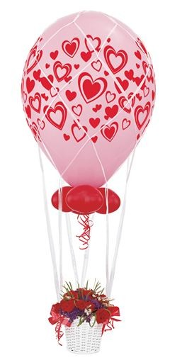 Balloon Net 16''