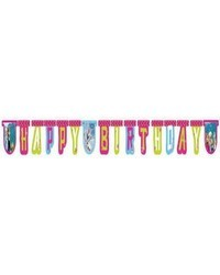 Frozen Happy Birthday Jointed Banner