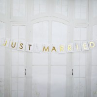 Scripted Marble - Just Married Car Bunting - 1m