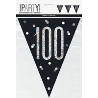 Black/Silver Glitz Age 100 Prism Flag Banner 9ft