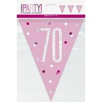 Pink/Silver Glitz Foil Prism Age 70 Flag Banner 9FT