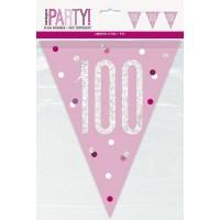 Pink/Silver Glitz Foil Prism Age 100 Flag Banner 9FT