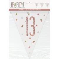 Rose Gold Glitz Age 13 Prism Flag Banner 9ft