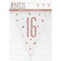 Rose Gold Glitz Age 16 Prism Flag Banner 9ft