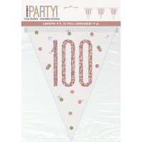 Rose Gold Glitz Age 100 Prism Flag Banner 9ft