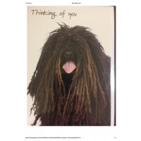 #06 Greeting Cards - Humour 12pk