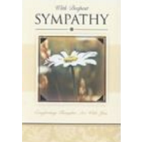 With Deepest Sympathy - Thinking Of You - Pack Of 12