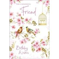 Happy Birthday - Wonderful Friend (Male/Female)  - Pack Of 12