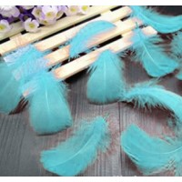 "Goose Coquille Feathers - Mint - 3-5 "" - 20g"