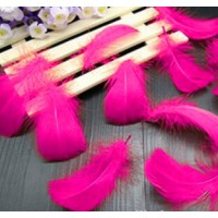 "Goose Coquille Feathers - Shocking Pink - 3-5 "" - 20g"
