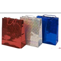 Assorted Colours Holographic Medium Gift Bags 12ct