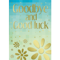 Goodbye and Good Luck - Pack Of 12