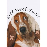#71 Greeting Cards - Get Well 12pk