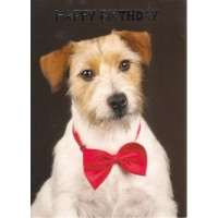#32 Greeting Cards - Belated Male 12pk