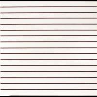 2'' Slatwall Panel